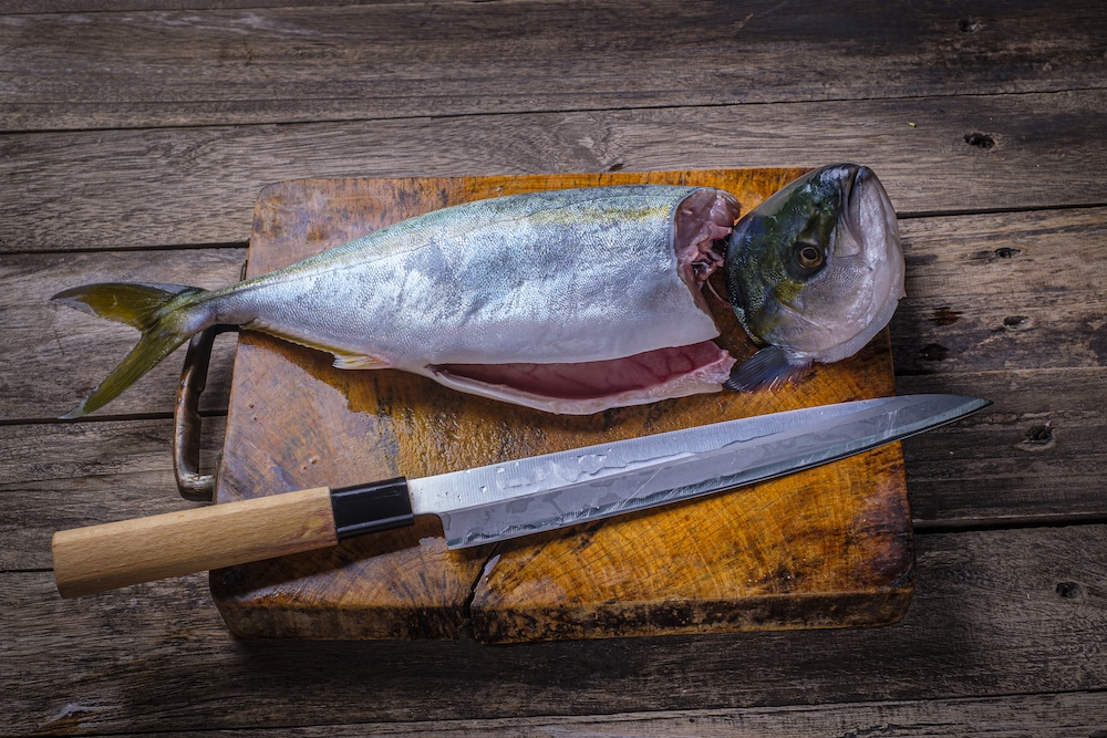 facts about what is a yanagiba knife